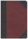 ESV Journaling New Testament, Inductive Edition (Brown)